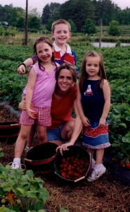 Strawberry Picking in North Carolina in 2003